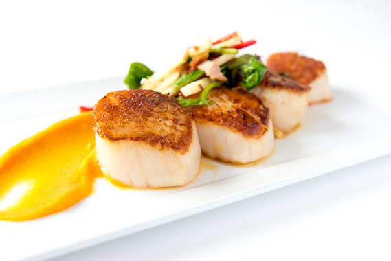 scallops in cincy