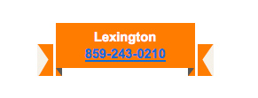 Lexington contact